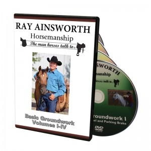 basic-groundwork-dvd-set-300x300